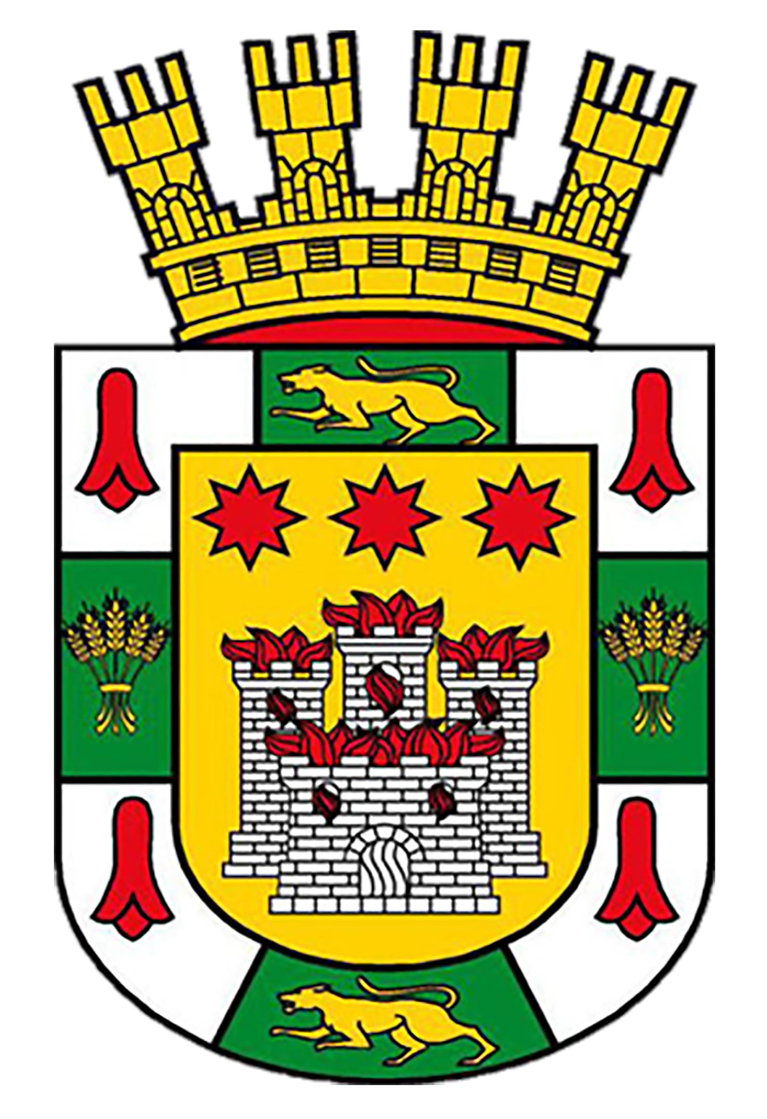 Logo of Municipalidad de Angol